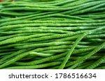 Organic Green Yardlong Beans In ...