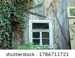 Old Barn Window Overgrown With...