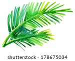 palm  tree watercolor original... | Shutterstock . vector #178675034