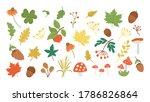 vector set of cute autumn herbs ... | Shutterstock .eps vector #1786826864