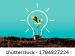 Light Bulb With Growing Plant....