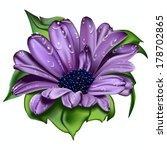 beautiful violet flower   Shutterstock .eps vector #178702865