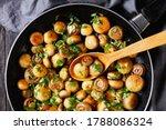 Spanish Dish  Tapas Garlic...