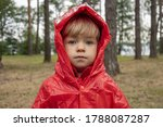 A Little Girl In A Red Raincoat ...
