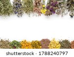 Medicinal Plants Bunches And...