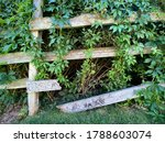 Old Three Rail Horse Fence Wit...