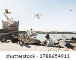 Essaouira  Morocco   September...