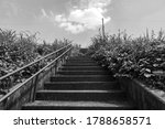 Stone Steps On A Riverbed On A...
