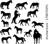Horses Collection Vector...