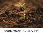 golden coins in soil with young ... | Shutterstock . vector #178877444
