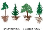set of trees with roots. pine ... | Shutterstock .eps vector #1788857237
