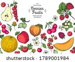 berries and fruits drawing... | Shutterstock .eps vector #1789001984