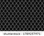 the geometric pattern with... | Shutterstock .eps vector #1789257971