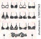 vector set  bra and bustier... | Shutterstock .eps vector #178927565