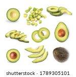 avocado set on a white... | Shutterstock . vector #1789305101