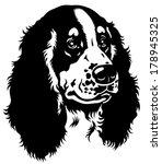 dog head  english cocker... | Shutterstock .eps vector #178945325