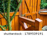 Wooden Gate And Fence On The...