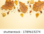 Autumn Composition With Autumn...