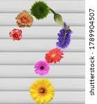 Garden Flower Buds Are Arrange...