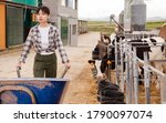 Chinese Female Working In...