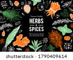 herbs and spices hand drawn... | Shutterstock .eps vector #1790409614