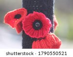 Close Up And Knitted Poppy...