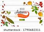 autumn sale banner design... | Shutterstock .eps vector #1790682311