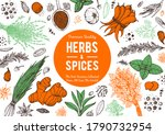 herbs and spices hand drawn... | Shutterstock .eps vector #1790732954