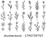 collection forest fern... | Shutterstock .eps vector #1790739707