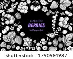 berries drawing collection.... | Shutterstock .eps vector #1790984987
