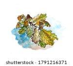 autumn herbarium  yellow green... | Shutterstock . vector #1791216371