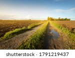 A dirt road through the green plowed agricultural field under dramatic sky. Rural scene. Farm and food industry, alternative energy and production, environmental conservation theme