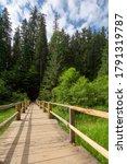 Wooden Bridge Above The Creek...