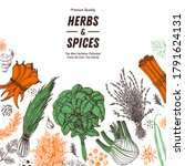 herbs and spices hand drawn... | Shutterstock .eps vector #1791624131