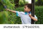 headshot portrait of preschool...   Shutterstock . vector #1791632531
