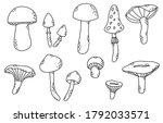 vector set of doodle mushrooms  ...