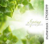 spring leaves | Shutterstock . vector #179208599