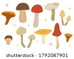 Vector Set Of Mushrooms  Autumn ...