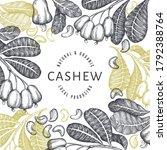hand drawn sketch cashew design ... | Shutterstock .eps vector #1792388764