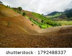 Small photo of Denuded land preparation for cornfield in northern Thailand