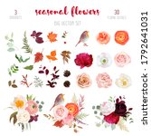 peachy rose  white and burgundy ... | Shutterstock .eps vector #1792641031