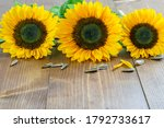 Sunflower Heads On The Wooden...