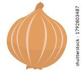 illustration of onion   simple... | Shutterstock .eps vector #1792803487