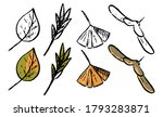 doodles set of autumn botanical ... | Shutterstock .eps vector #1793283871