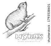 Vector Of Hyrax On Tree Trunk....