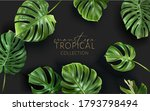 vector tropical frame with... | Shutterstock .eps vector #1793798494