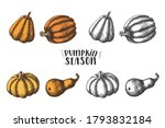 pumpkin set. hand drawn colored ... | Shutterstock .eps vector #1793832184