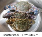 Fresh Blue Swimming Crabs Are...