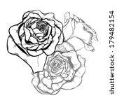three rose flower style line art | Shutterstock .eps vector #179482154