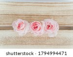 pink rose  on wood background. | Shutterstock . vector #1794994471